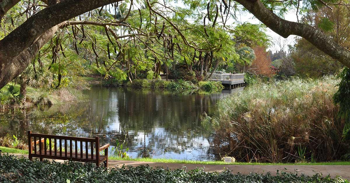 Best kept secrets Palm Beach – Mounts Botanical Garden